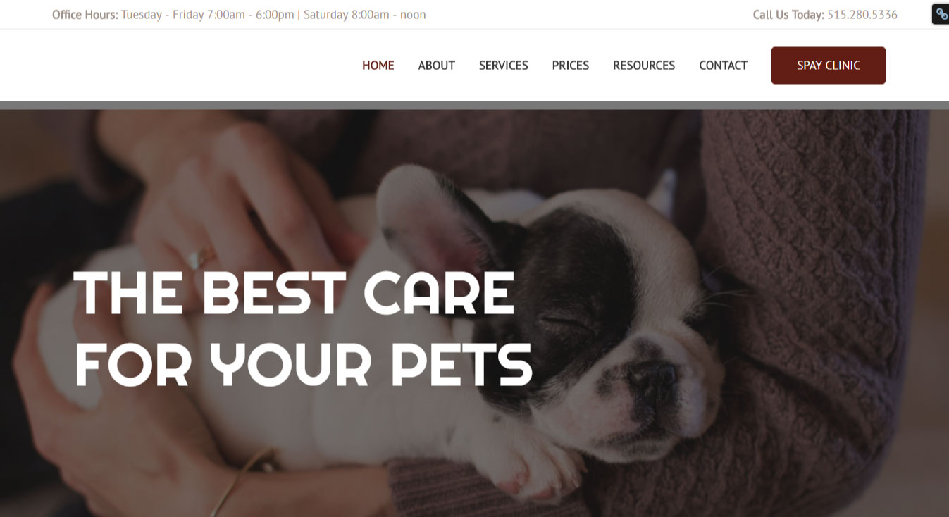 WordPress Website Design | Jennifer Franklin Portfolio | Veterinary Website Design | Jennifer-Franklin.com