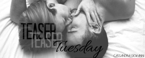Teaser Tuesday! 'Breaking Beth' by Jennifer Bene
