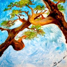 Oaks-Skyward