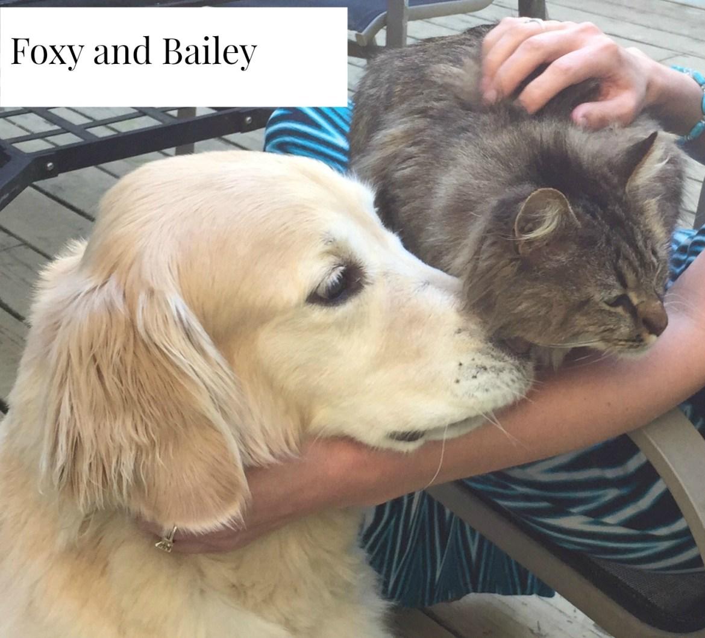 Foxy and Bailey