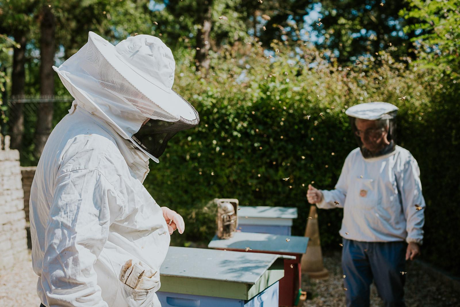bd-bees-6