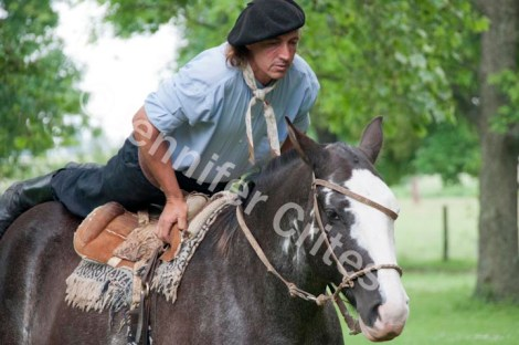 Gaucho and Horse Demonstration