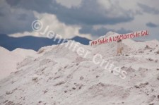 Do not climb the hills of salt