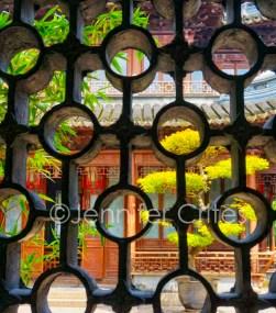 Yu Garden-02340