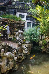 Yu Garden-02341