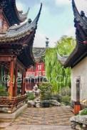 Yu Garden-02366