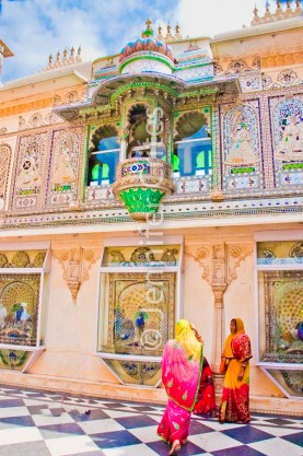 Udaipur city palace 783