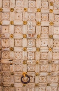 Udaipur city palace 787
