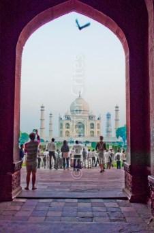 Taj Mahal 543