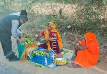 Ranthambhore fruit sellers 421