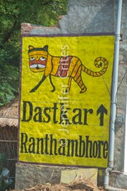 Ranthambhore tiger sign 427