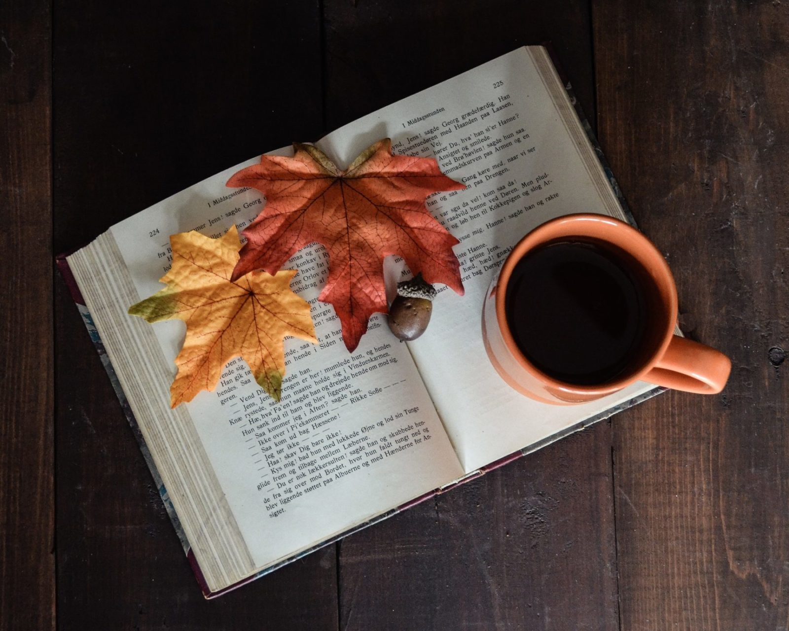 Fall is the Best Season for Reading