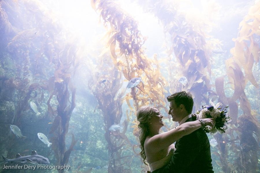 Scripps Aquarium: Heidi & Wade