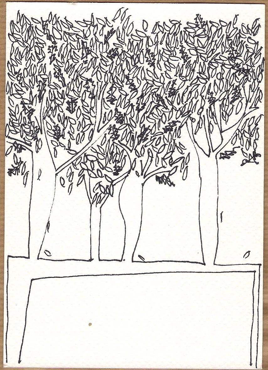Serie Disegni 12 Alberi #08