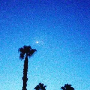 morning star & moon (c)jenniferhillman.com