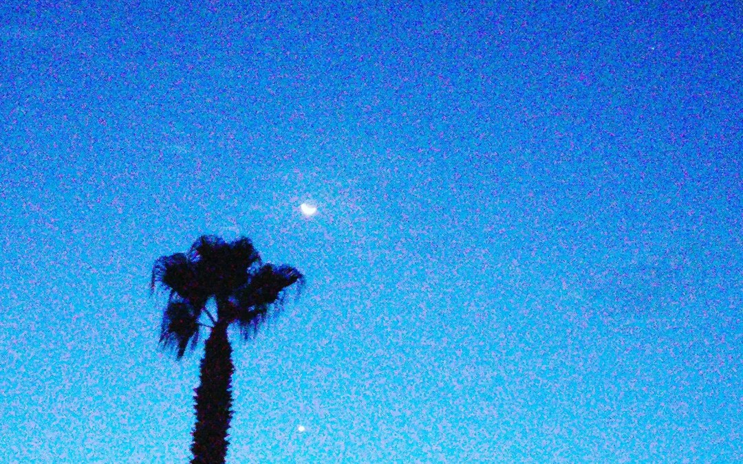 Morning Star & the Moon Singing