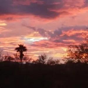 pink skies (c)jenniferhillman.com
