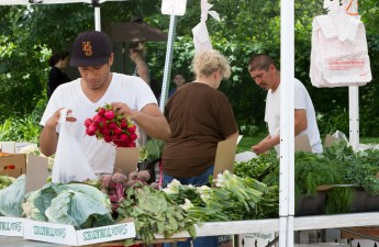 An employee bags radishes at the Jeffery Farms, Inc. stand at the Brookfield farmers market.