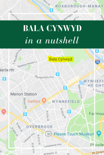 Considering a move to the Philadelphia area? Find out if Bala Cynwyd would be a good place to buy a house!