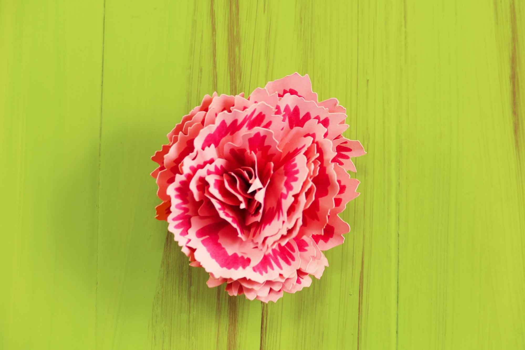 Rolling Paper Flower Cut Out