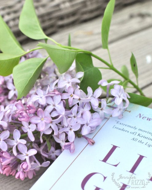 Upclose lilac girls