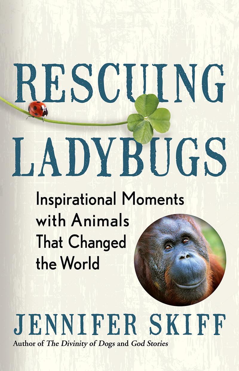 Rescuing Ladybugs