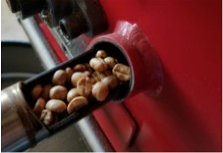 Java Jens coffee beans