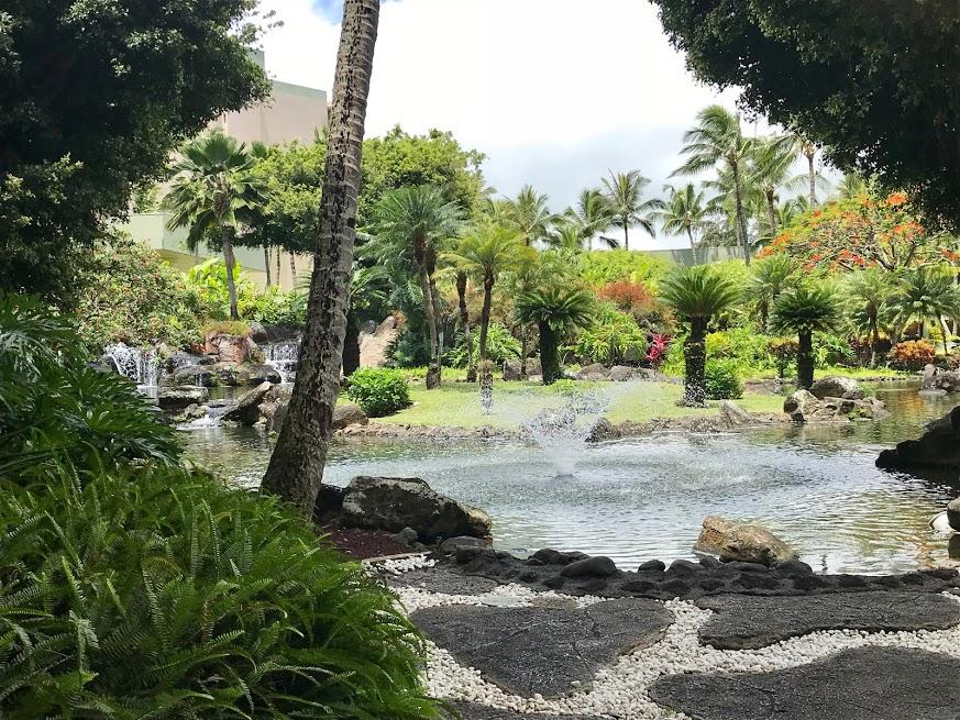 Kauai Koi Pond