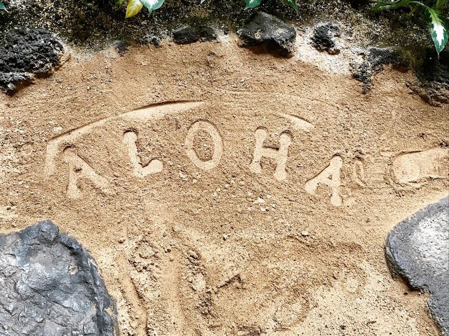 Kauai aloha
