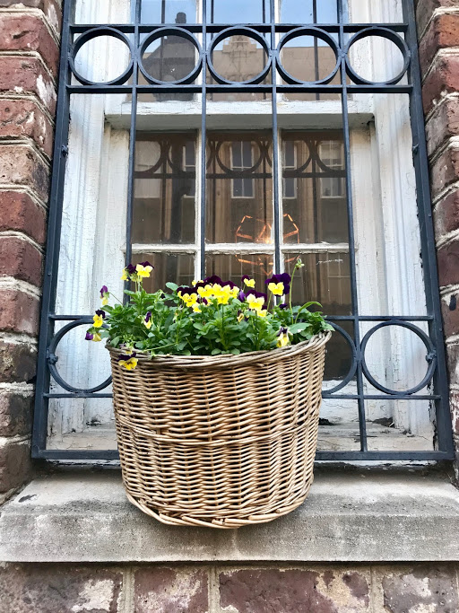 flower basket Charleston