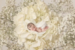 central virginia newborn photographer