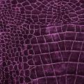 Grape Velvet