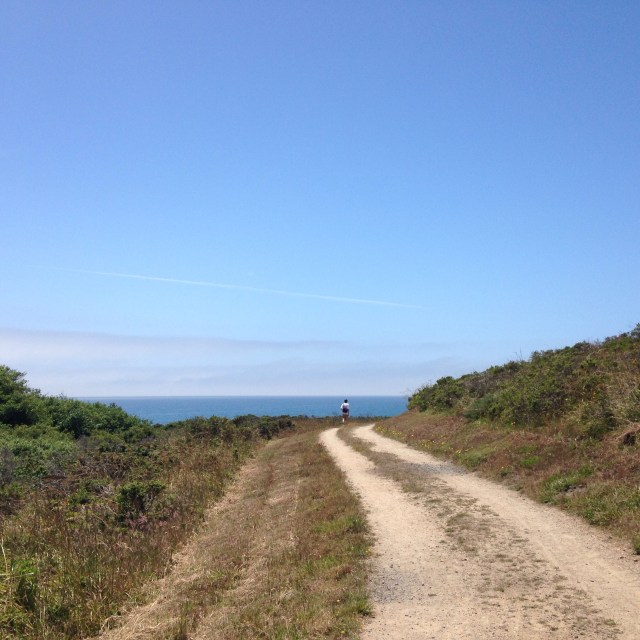 Coast Trail, Point Reyes, CA