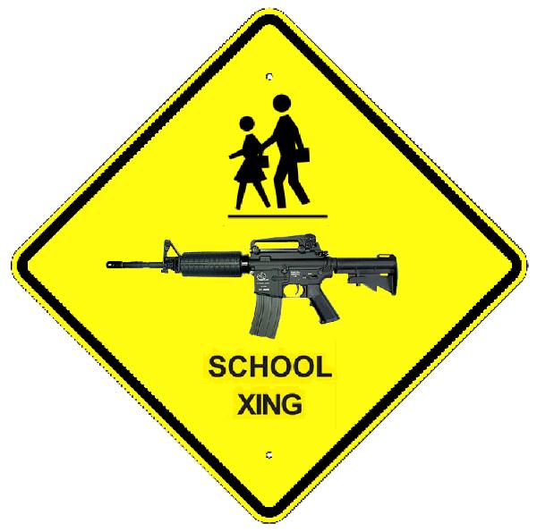 schools and guns