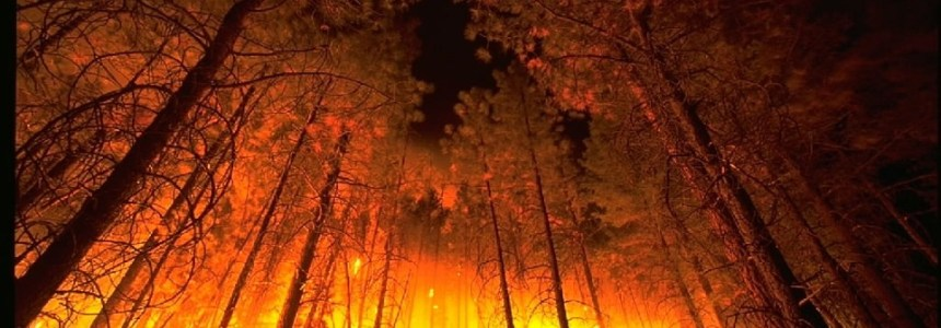 Wildfires and Wind