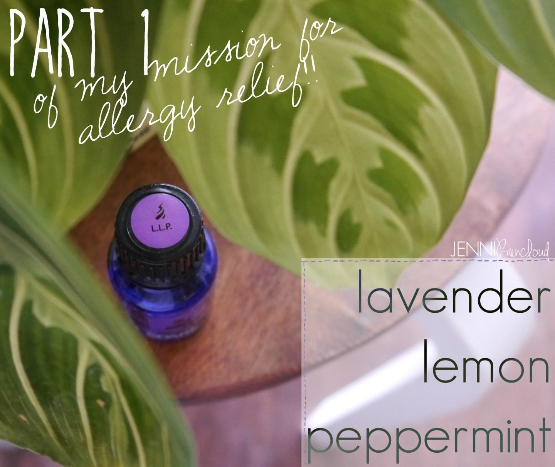 Spark Naturals L.L.P Blend