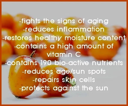 sea buckthorn skin benefits