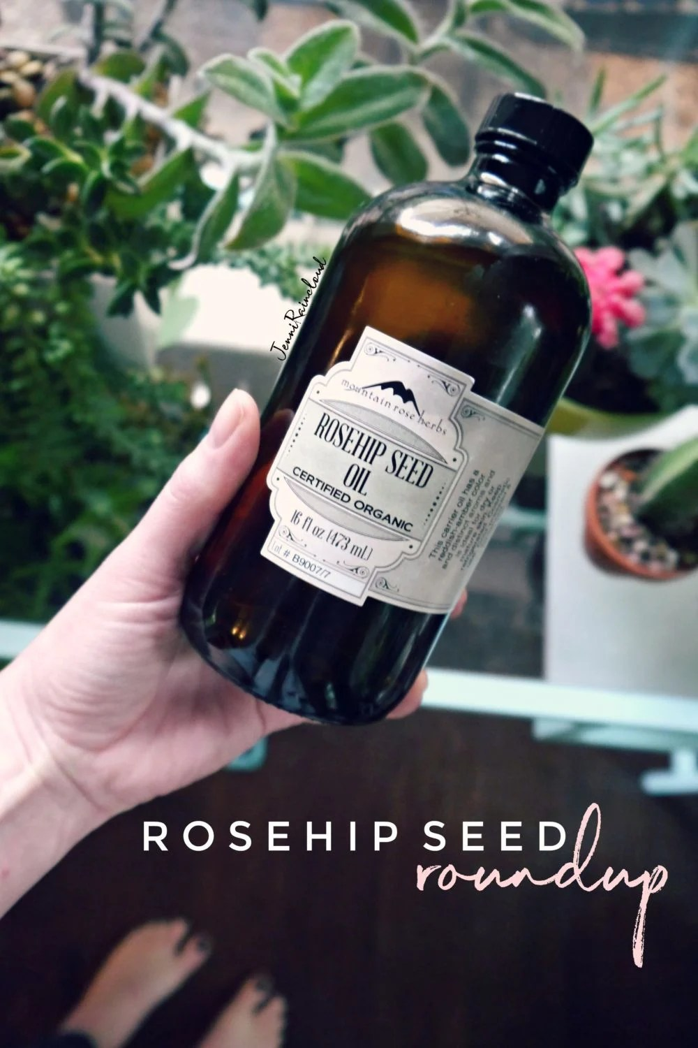 Rosehip Seed Oil Recipe Round Up-Because it's 50% Off!!