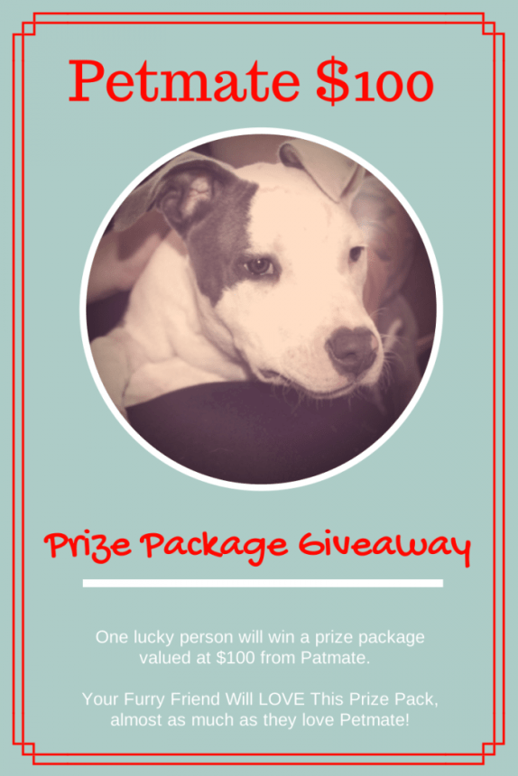 Petmate $100 Prize Package Giveaway