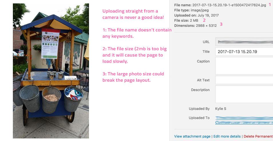 three common wordpress image mistakes