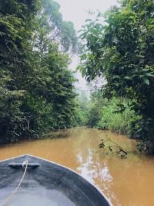 Kinabatangan rivier