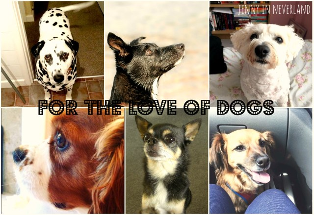dogs2