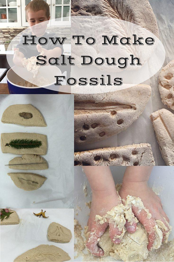How to Make Salt Dough Fossils