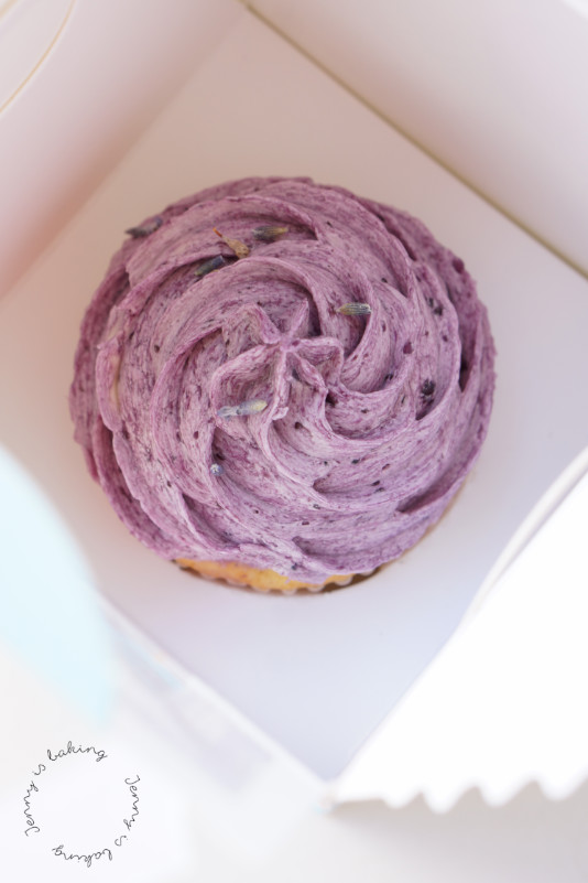 Lavendel-Cupcake