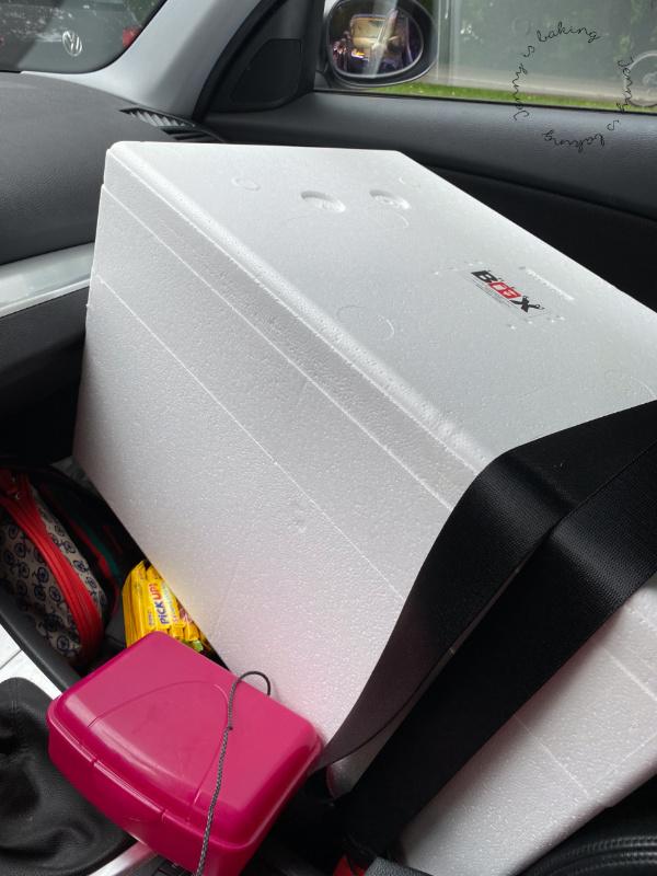 Kühlbox im Auto