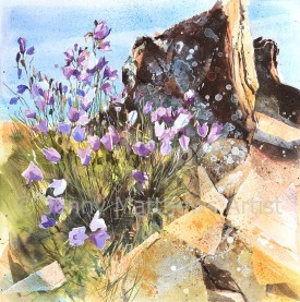 Bluebells at Eyemouth: 50 x 50cm, watercolour on paper, framed price £1,500