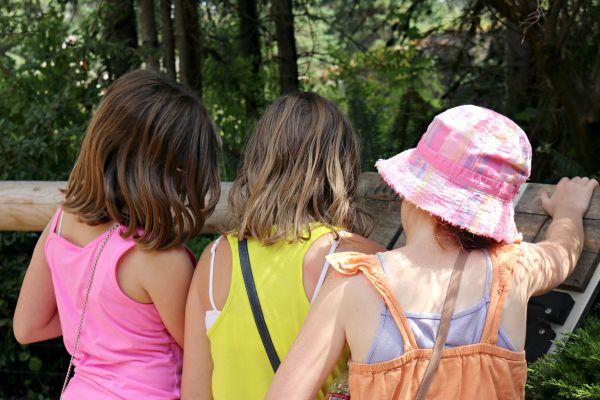 kids exploring - A visit to the Woodland Park Zoo