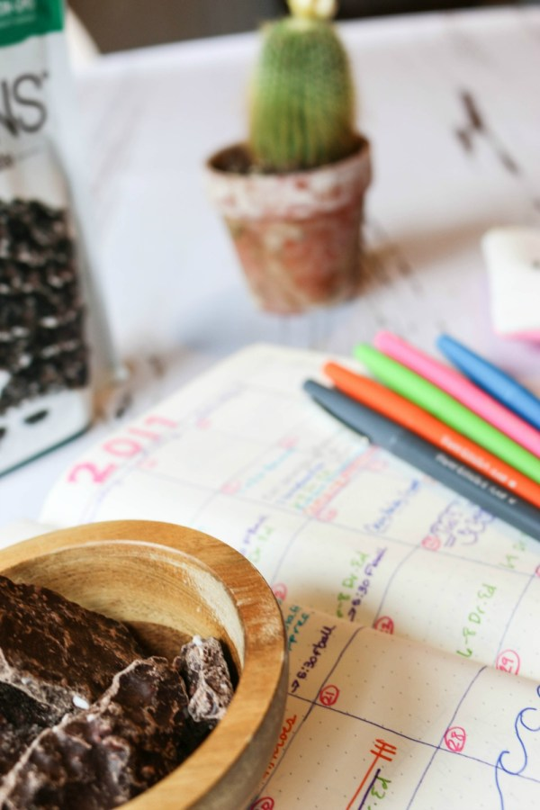 Planning snack   barkTHINS