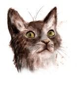 kitty-sketch