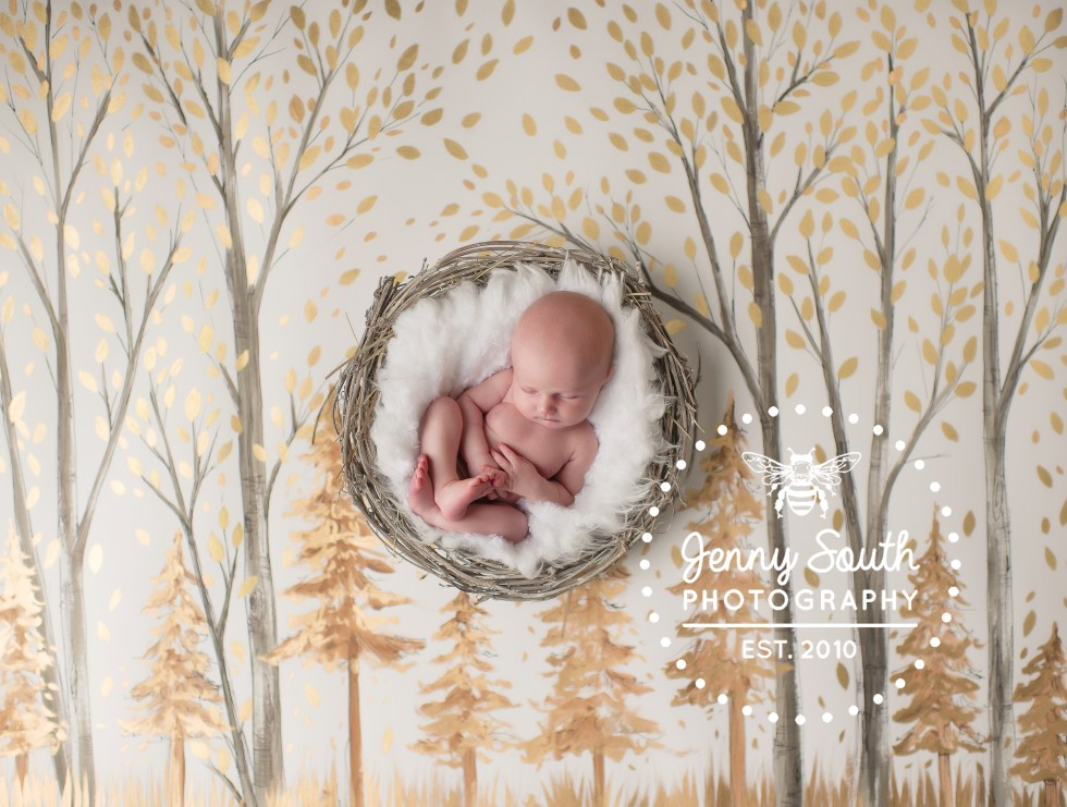 A Christmas handprinted backdrop by Heidi Hope used by her design partner Jenny South Photography during a newborn session in Devon